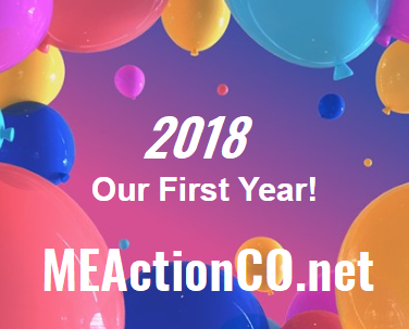 our first year 2018 300x meac