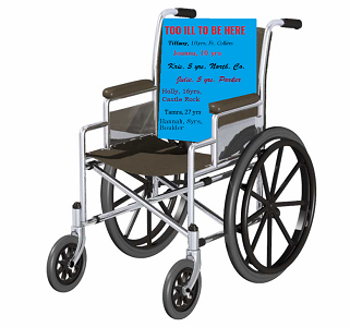 wheelchair paint b 300